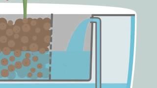 getlinkyoutube.com-Understanding  Aquaponics By Animation