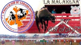 getlinkyoutube.com-JUGETE CARO Y COLOSO LOS TOROS CAMPEONES!! ASOC. GAN. COSTA Y SUR EN EL CHANTE 2016