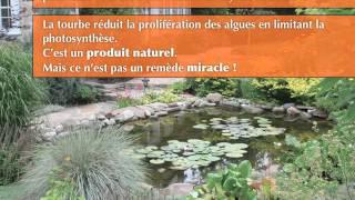 getlinkyoutube.com-Laguna - Garder une eau propre dans son bassin de jardin