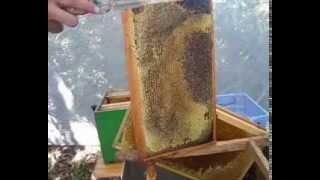 getlinkyoutube.com-Пасечный нож JERO - находка для пчеловода