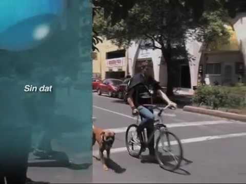 Accidentes de ciclistas