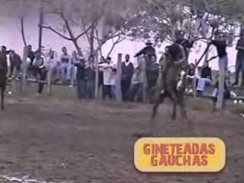 Os Golpes do Conhaque - DVD - Gineteadas Gauchas - Vol 1
