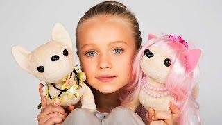 getlinkyoutube.com-Чи Чи Лав ( Chi Chi Love) собачка - игрушка для девочке. ЧиЧиЛав. Собачка.