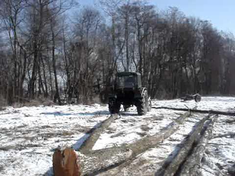 Zetor 3011 - zrywka w lesie 2011