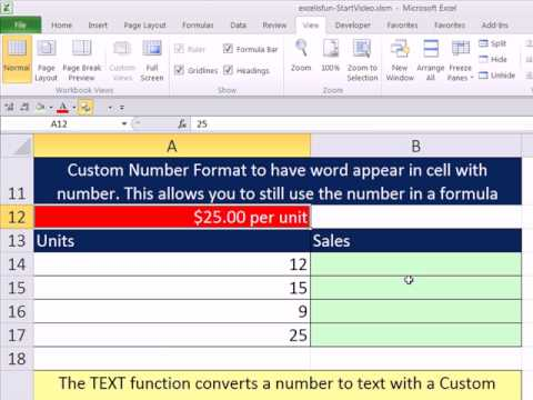 Slaying Excel Dragons Book #36: Custom Number Format &amp; the TEXT function