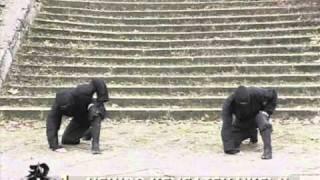 getlinkyoutube.com-Koga Ryu Ninjutsu - Apprentissage