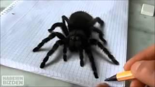 getlinkyoutube.com-Desenho 3D de aranha!!!De arrepiar