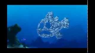 getlinkyoutube.com-Ψάχνοντας τον Νέμο - Κοπάδι ψαριών