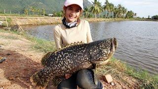 getlinkyoutube.com-Giant Grouper  มันส์เก๋าสมชื่อ ที่ 300 ยอด by Mayme