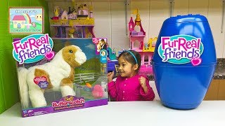 getlinkyoutube.com-ADORABLE TOY PETS FURREAL FRIENDS MAGICAL SHOW PONY BABY Big Surprise Egg Toys Videos Disney Junior