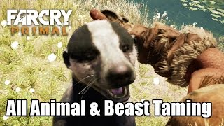 getlinkyoutube.com-All Animal and Beast Taming stats & abillties Far Cry Primal