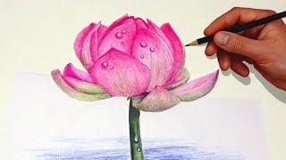 getlinkyoutube.com-Drawing A Lotus Flower With Simple Colored Pencils |