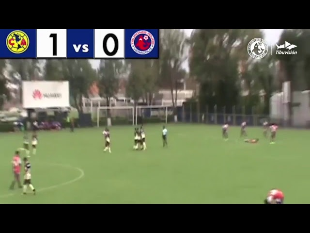 Resumen de la Liga MX Jornada 1: Veracruz - Necaxa