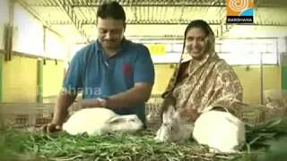 getlinkyoutube.com-Dr. Migdad, Ashiyana Rabbit farm, Malappuram : Nehru Award Winner