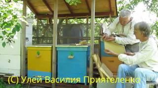 getlinkyoutube.com-Уникальные Эффективные Ульи На Пасеке  Василия Приятеленко, Kiev, Ukraine