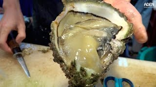 getlinkyoutube.com-Japanese Street Food: Giant Oysters