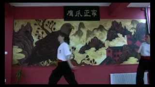 Lily Lau Shaolin Eagle Claw Kung Fu