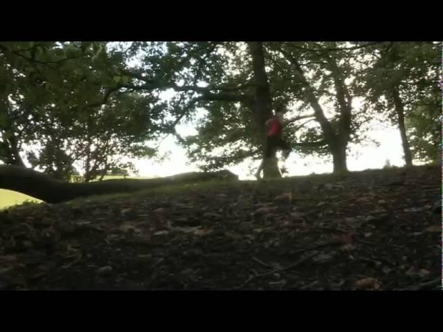 Spring för livet med Zombies, run! -Johan Sjögren