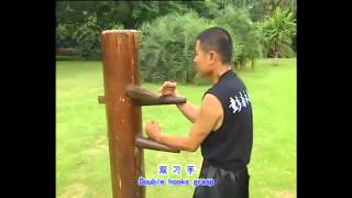 Foshan Wing chun wooden dummy full tutorial with applications