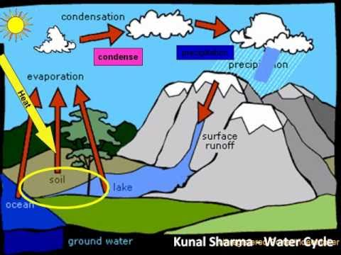 The WATER CYCLE - An Animation of Water going through its Cycle