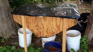 getlinkyoutube.com-Chicken Feeding - Red Wiggler and Black Soldier Fly bins setup