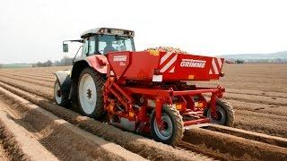 Grimme GB 215 potato planter