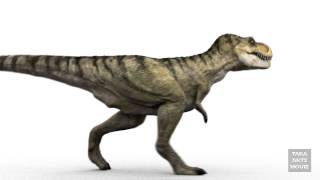 getlinkyoutube.com-DINOSAURS - T-Rex 3D Animation Walk Cycle RenderTest