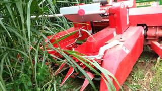getlinkyoutube.com-เครื่องตัดหญ้าเนเปียร์ 6 Napier Grass Harvester