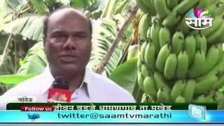 getlinkyoutube.com-Jeevan Vadje's banana success story
