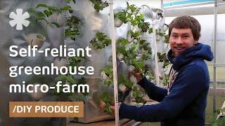 getlinkyoutube.com-Backyard aeroponics: self-sustaining farm for Wisconsin cold