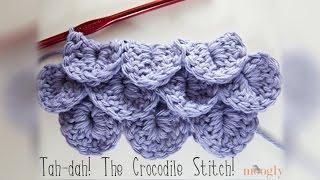 getlinkyoutube.com-How to Crochet: Crocodile Stitch