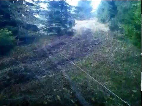 Zrywka drewna | Ursus C360 | Górzyste tereny | Trudne Warunki