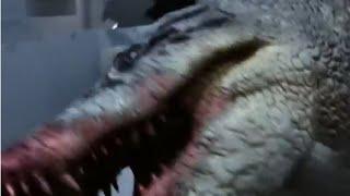 All Creature Effect Sequences #1: Lake Placid vs Anaconda