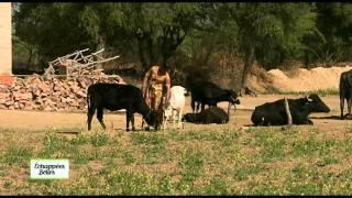 getlinkyoutube.com-Inde, Rajasthan - Echappées belles