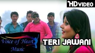 Teri Jawani Sahil Garg, Renu Chaudhary Latest Hot Harynvisong 2016 | Voice of Heart Music