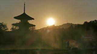 getlinkyoutube.com-秋桜と夕暮れ@法起寺 FZ1000(4K) NARA,Japan