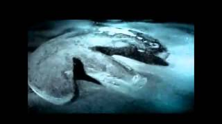 getlinkyoutube.com-UFO/USO crash on Baltic Seafloor !!! Ocean Explorer found anomaly in Baltic Sea (Jun.2012)-Teil-1