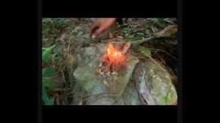Indonesian Celebes Bushcraft - membuat api dari resin kayu pinus