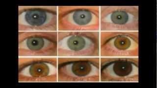 getlinkyoutube.com-Eye color and blood types Tesla. Mythological Zeus and Enki, Etc are really not fictional PT 3