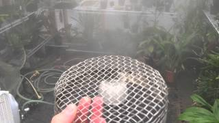 getlinkyoutube.com-FOGGER for The GREENHOUSE FOGGER REALLY WORKS!