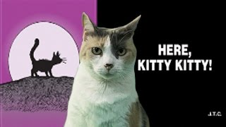getlinkyoutube.com-A Chick Tract With Creationist Cat