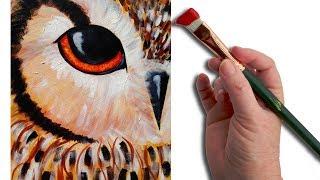 getlinkyoutube.com-Owl EYE | Beginner Acrylic Painting Lesson | The Art Sherpa