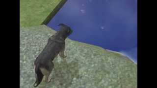 getlinkyoutube.com-Sims 2 sad story about two dogs- Son and Father