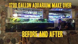 getlinkyoutube.com-1700 gallon Aquarium Vivarium AquaScaping Before and After