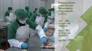 «Агрономика». Белгородское мясо (21.01.2016)