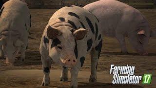 getlinkyoutube.com-Farming Simulator 17 - Comprando Porcos e Levando Ate o Chiqueiro