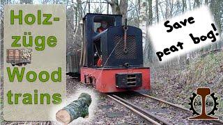 getlinkyoutube.com-Feldbahn 600mm: Kurbahn Bad Bramstedt Holztransporte 2014