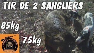 battue dans le Gard :tir de 2 gros sangliers/ wild boar / jabali