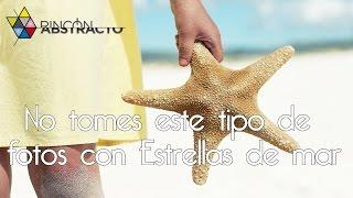 getlinkyoutube.com-No tomes este tipo de fotos con Estrellas de mar