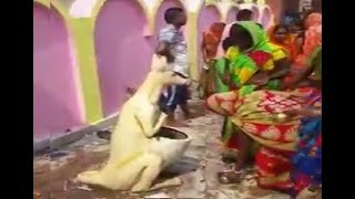 Indian women worship Dustbin - Try not to Laugh